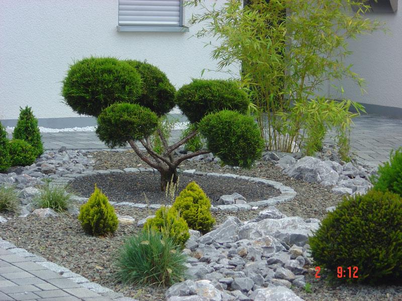 Galerie weber - Vorgartengestaltung mit steinen ...